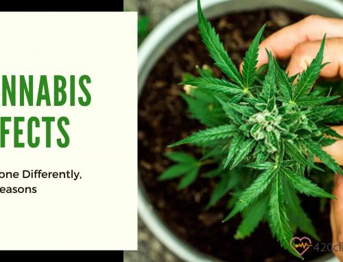 Reasons Why Cannabis Affects Everyone Differently