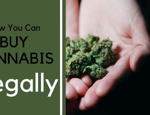 How to Purchase Medical Cannabis In a Legal State?