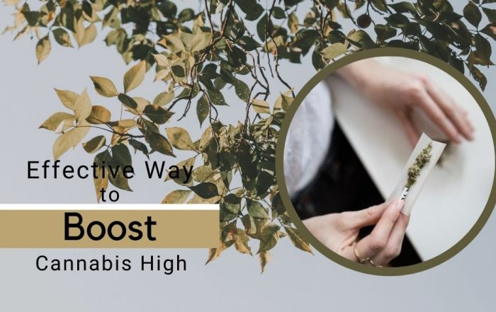 learn the effective tips to boost your cannabis high