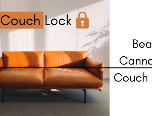 A 420 Clinic Guide on How to Beat Cannabis Couch Lock