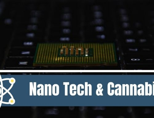Understanding Nanotechnology and Cannabis